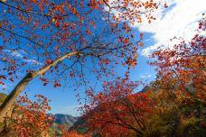 坡峰岭-北京
