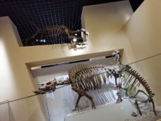 北京自然博物馆-北京-Jessicaontraveling
