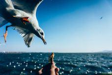 海埂公园-昆明