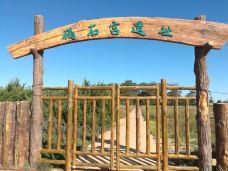 碣石宫遗址-东戴河-205****990