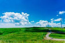 张北坝上草原-张北