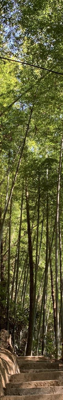 高州仙人洞景区-高州