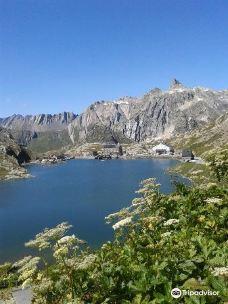 Valle del Gran San Bernardo-瓦莱达奥斯塔
