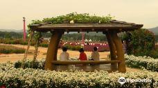 娜丽公园-杨州