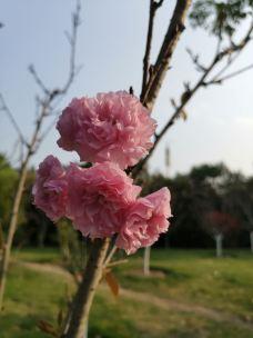 温泉公园-福州-筱米米秀七