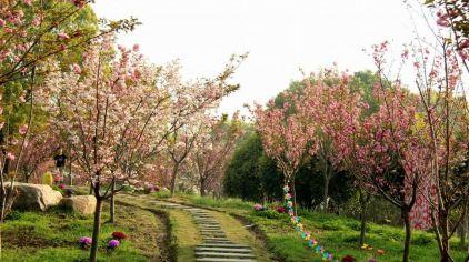 杭州海皇星生态乐园135704 (39)