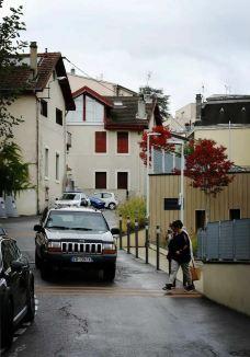法国依云小镇-上萨瓦-轻轻的一个蚊