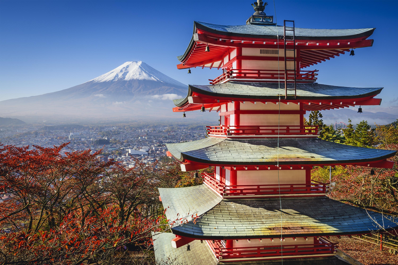 東京包車一日遊 - 富士山/箱根/鎌倉