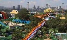 美心洋人街水公园-重庆-小熊猫122