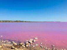 粉红湖-里约拉加尔多-gz当地向导伊妹儿