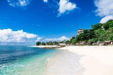 巴厘岛-尊敬的会员