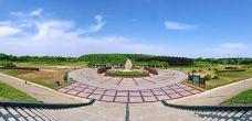 临淮岗风景区-霍邱-M16****939