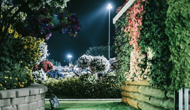 真实矮人图片_迪拜夜光花园攻略,迪拜夜光花园门票/游玩攻略/地址/图片/门票 ...