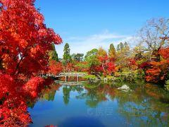 探访《名侦探柯南:迷宫的十字路口》京都取景地行程路线