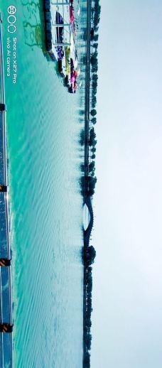 少海新城-胶州-M33****4265