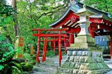 来宫神社-热海市-尊敬的会员