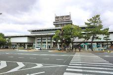 奈良县厅-奈良-234****816