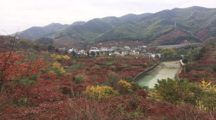 丹山赤水 (5)