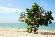 Ancon Beach-圣斯皮里图斯省-乖小咪