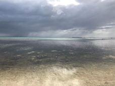 三圣湾海滩-凯恩斯-M49****629