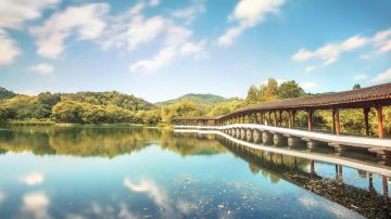 西湖浴鹄湾夏季 风景区