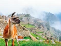南极半岛+秘鲁+智利+玻利维亚自然探索11日游