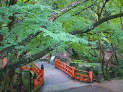奈良1日逛吃路线,拍出小众美景!