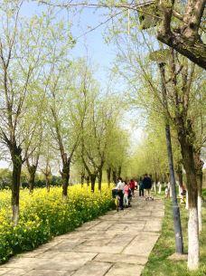 艾溪湖湿地公园-南昌-M35****634