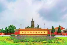 临济寺-正定-耀晨影像