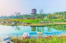 郑州园博园-新郑-doris圈圈