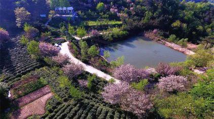 桐柏山淮源风景区 (3)
