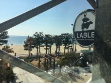 Lable-釜山-_A2016****918291