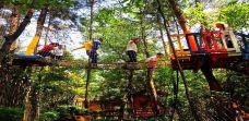 武汉松鼠部落森林假日公园-咸宁
