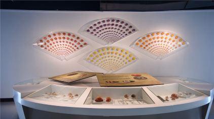 贝壳博物馆9