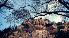 珠山国家森林公园-青岛-麒光佳合