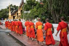 老挝-doris圈圈