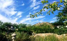 日照泉山云顶风景区 (15)-泉山云顶风景区-日照-C_image