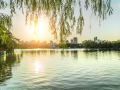 探访《粉红女郎》上海取景地行程路线