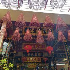 天后宫-胡志明市-翱翔的大鲨鱼