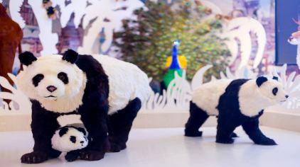 bibi毛绒动物园 (5)