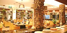 凤园椰珍椰子鸡主题餐厅(天河南二路店)-广州-Miss_Li123