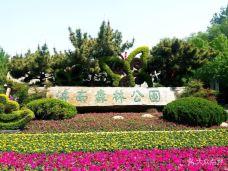 济南森林公园-济南-彤心未泯