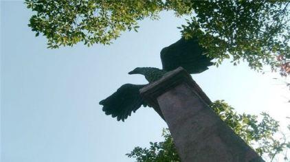 鹰扬关 (13)
