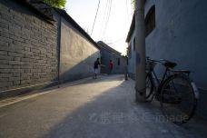 北京-doris圈圈