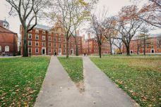 哈佛大学-剑桥-doris圈圈
