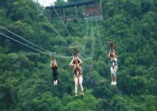 白云山极限滑索-广州-小熊猫122