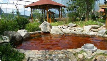 麦积山温泉2