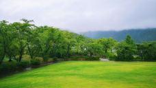 八木崎公园-富士河口湖町-ruth68