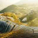 Longji Rice Terraces Admission Ticket