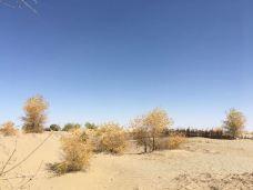 塔克拉玛干沙漠(巴音郭楞)-巴音郭楞-aa-hu